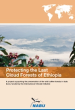 """Protecting the Last Cloud Forests of Ethiopia"""