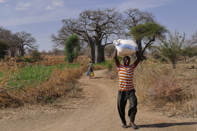 Irrigation agriculture as a means to mitigate drought effects on farmers. Photo: Samuel Fournet