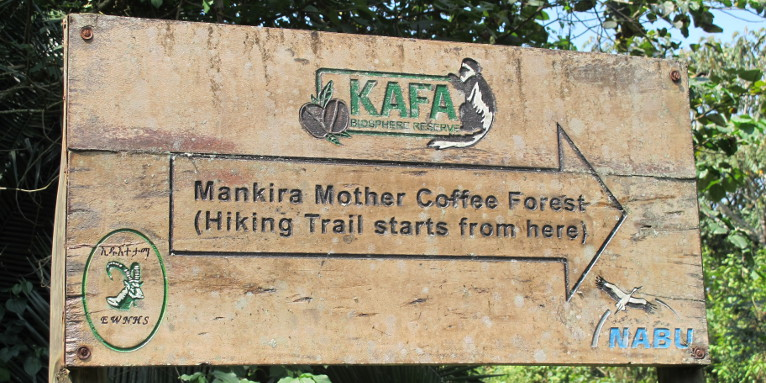 Signs will guide you to the famous Mankira forest - photo: Mieke Kuiters