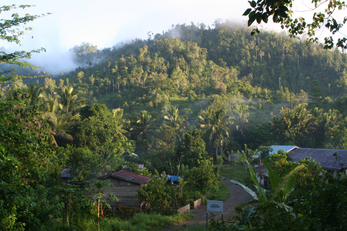 A project to protect threatened tropical forest areas on the Indonesian island Sulawesi