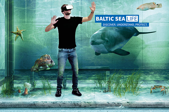 Join us for the first virtual dive into the Baltic Sea