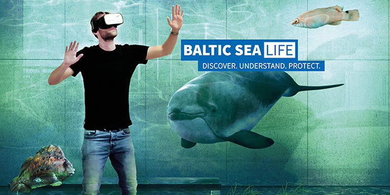 Baltic SeaLIFE Key Visual